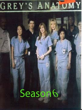 Grey's Anatomy - The Complete Season Six